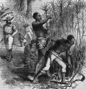 La vie quotidienne des esclaves dans les colonies françaises (XVIIe-XVIIIe Sc.)